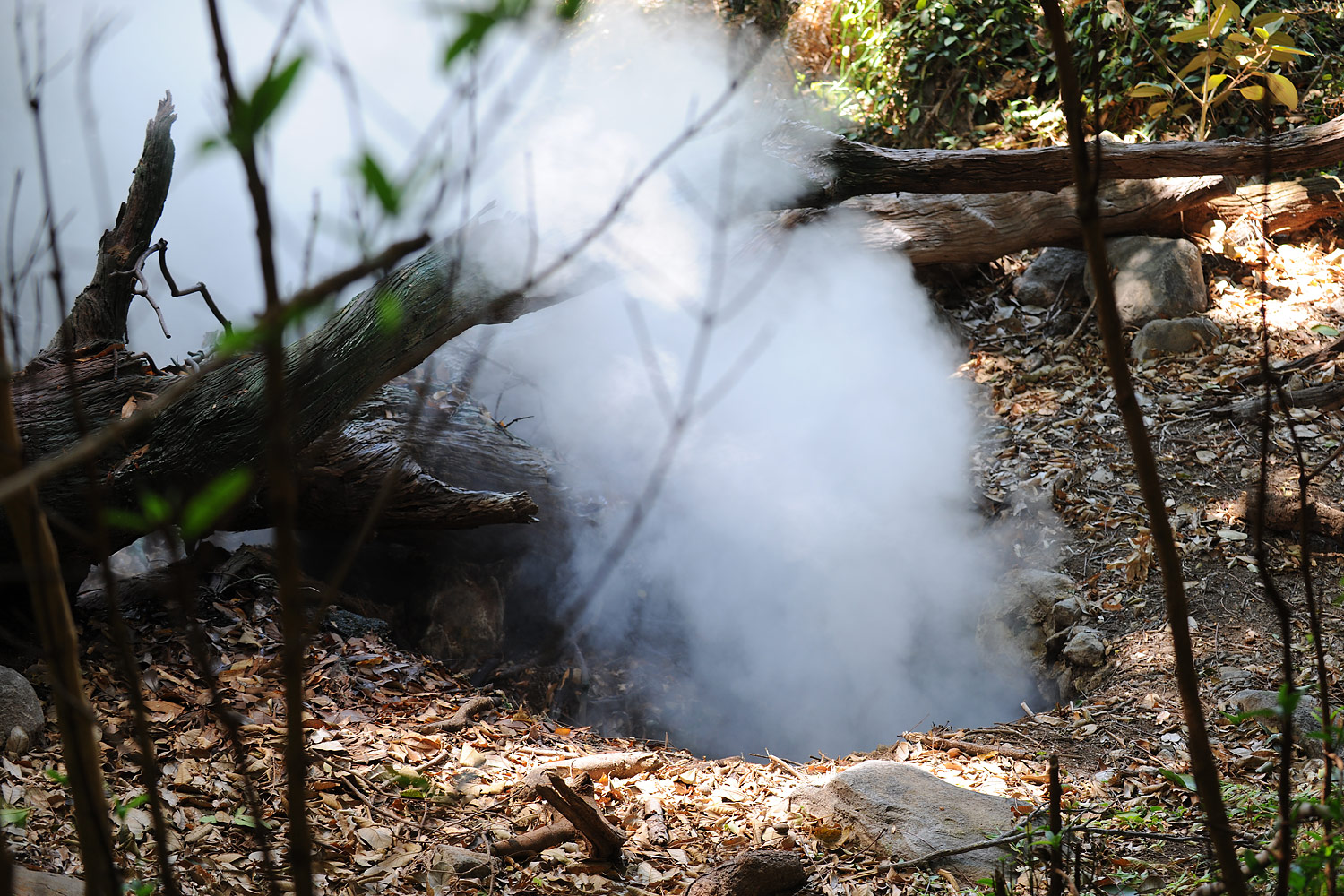 Smoke pours out of a hole in the ground, Rincón de la Vieja, Costa Rica