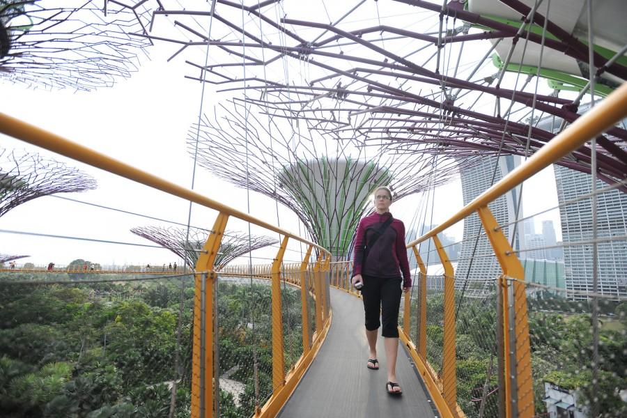 Skywalk at the Super Trees, Singapore